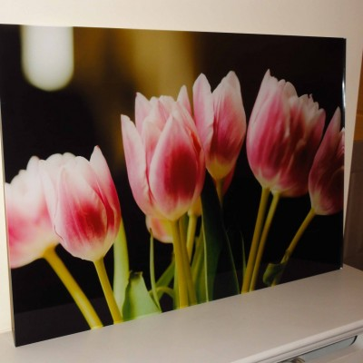 Pink Tulips on Acrylic (1 of 1)
