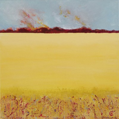 Carol Kinchin's Field of Gold