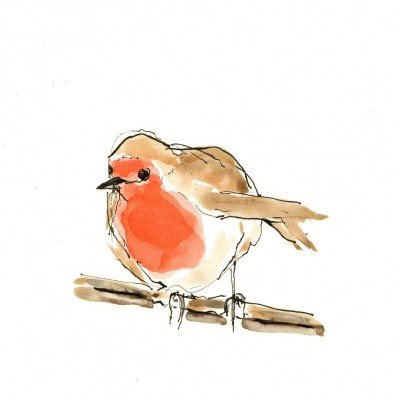 carolebury-happy-robin-watercolour